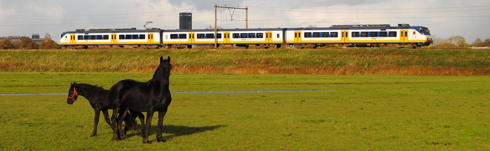 Werkgroep Spoor in Friesland